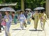 Japonsko - incentivní zájezd OMT group