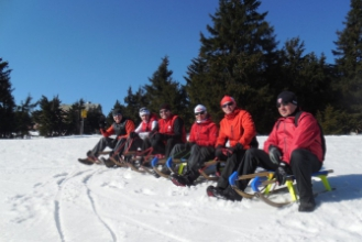 Student trip - sledges on the Black mountain